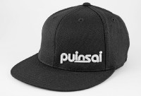Puinsai Flexfit 210 Fitted Hat